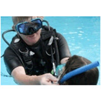 Introduction to Diving